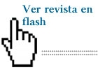 Revista en flash